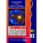 Matematica XI M1