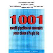 1001 EXERCIŢII ŞI PROBLEME