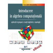 Algebra computationala - vol. II (e-book)
