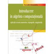 Algebra computationala - vol. III (e-book)