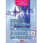 Exerciţii şi probleme de algebră şi analiză matematică cls. a XI-a