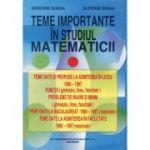 Teme importante în studiul matematicii