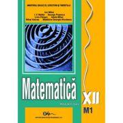 Matematică XII M1