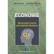 Economie-Ghid de pregătire intensivă pentru Examenul de Bacalaureat